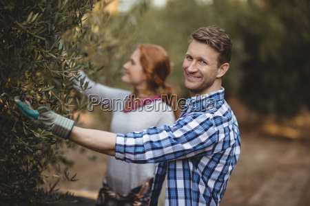 handsome young man with woman plucking