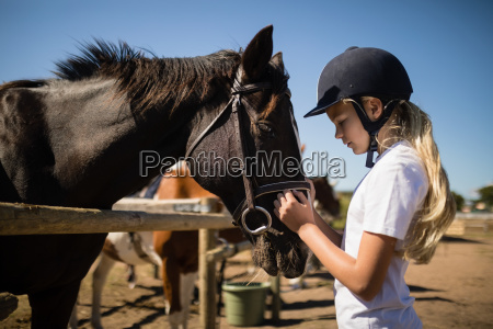 girl caressing the brown horse in