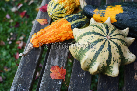 four ornamental gourds with bright colours
