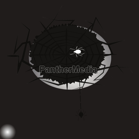 created halloween poison spiders abstract background