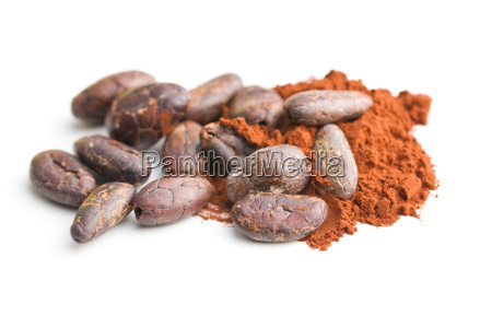 tasty cocoa powder and beans