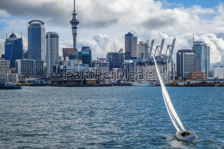 auckland view from the sea and
