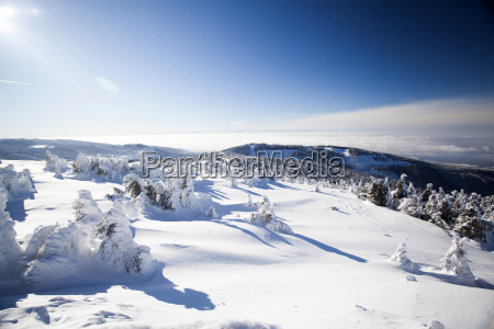 snow covered winter landscape