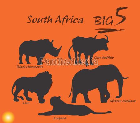 big five in africa illustration vector