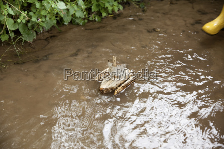 carved wooden boat in brook