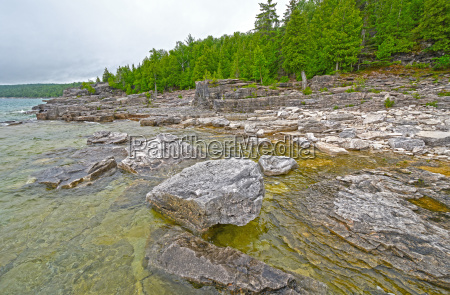 rocks and pines on a remote