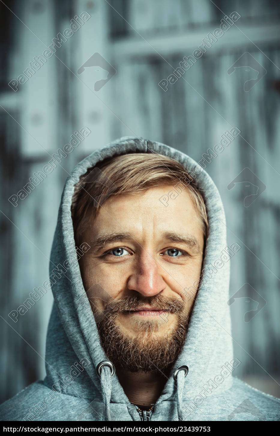portrait, of, a, young, bearded, man - 23439753