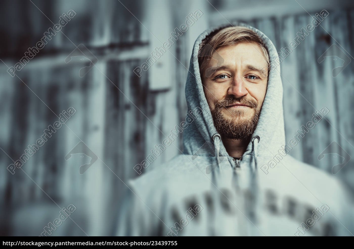 portrait, of, a, young, bearded, man - 23439755