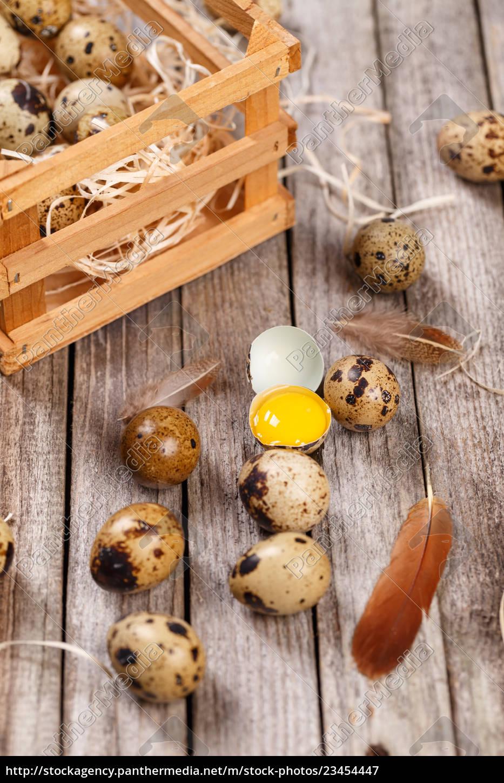 some, quail, eggs - 23454447