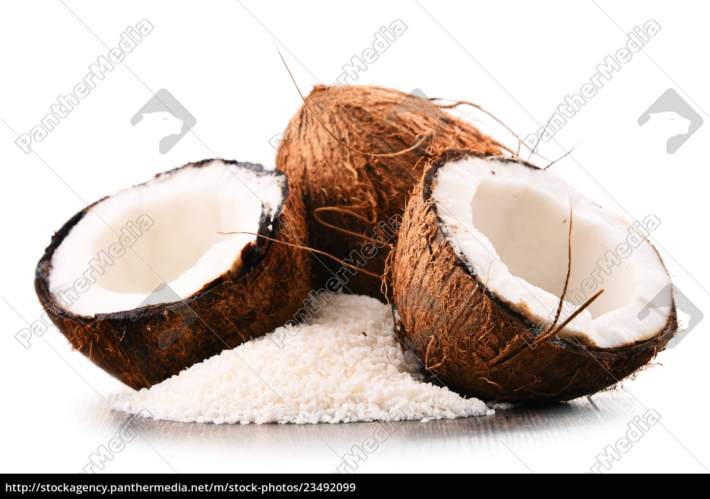 composition, with, shredded, coconut, and, shells - 23492099
