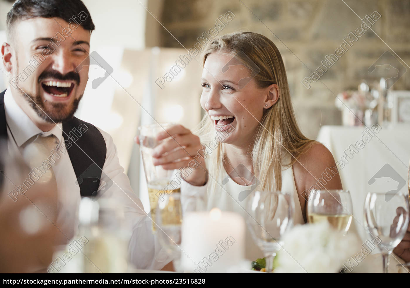 wedding, guests, at, the, dinner, party - 23516828