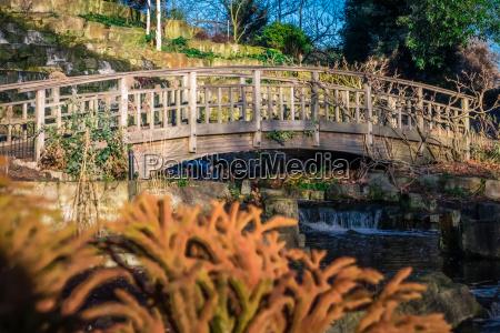 wooden bridge in regents park