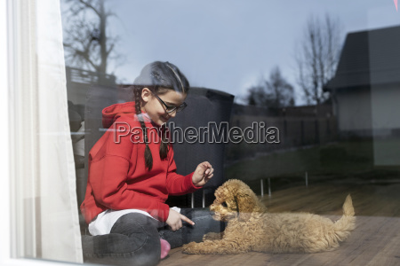 girl playing with her dog in
