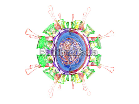 influenza virus 3d rendering