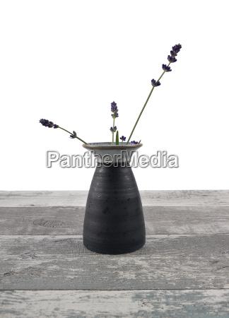 vase with lavender
