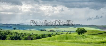farmland in val dorcia tuscany