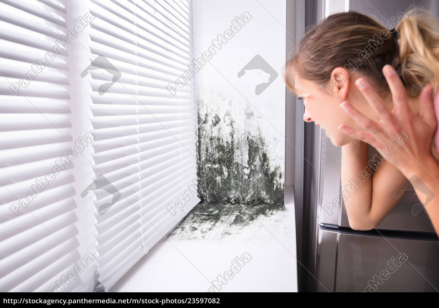 shocked, woman, looking, at, mold, on - 23597082