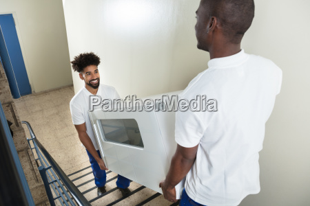 young, movers, carrying, cabinet, while, climbing - 23601362