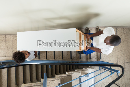 young, movers, carrying, shelf, while, climbing - 23601356