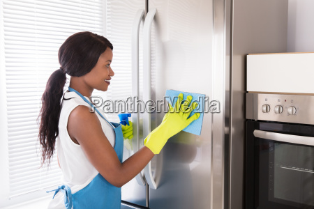 woman, cleaning, her, stainless, steel, refrigerator - 23602192