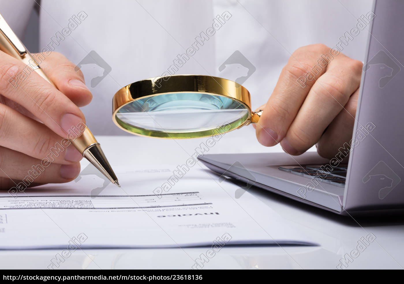 auditor, inspecting, financial, documents - 23618136