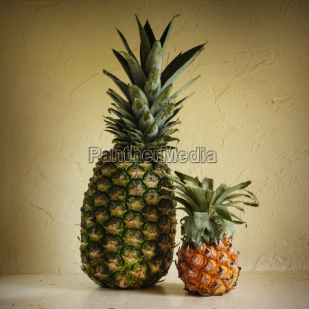 fresh and rotting pineapples against yellow