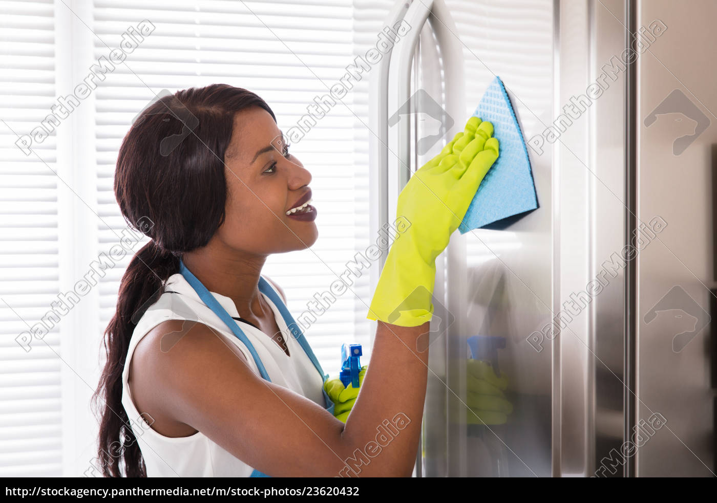 woman, cleaning, her, stainless, steel, refrigerator - 23620432