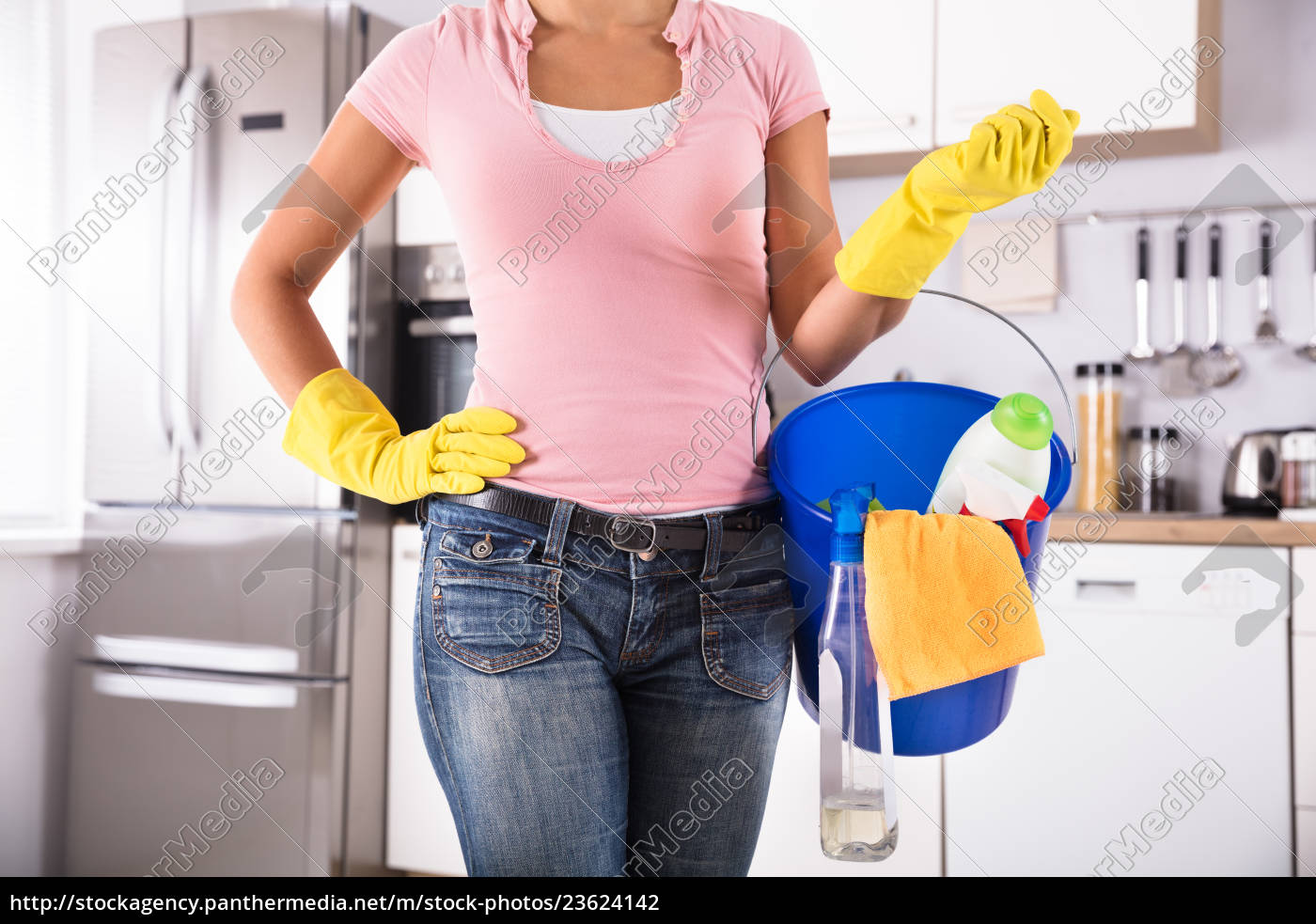 woman, holding, cleaning, tools, and, products - 23624142