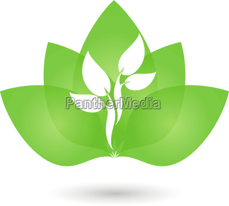 leaves tree plant naturopath logo