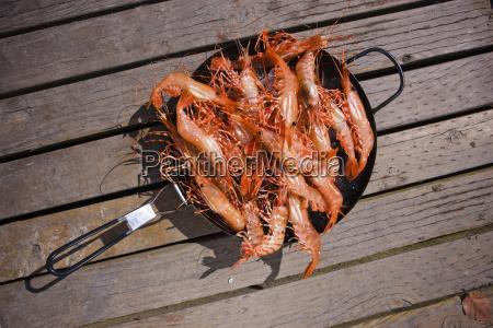 fresh caught shrimp in a pan