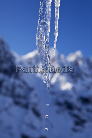 water dripping from melting icicle in
