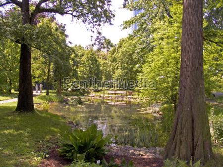 city town masters tree trees garden