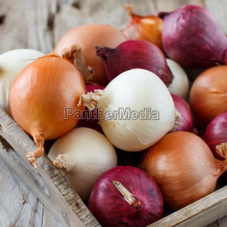 raw onions in basket