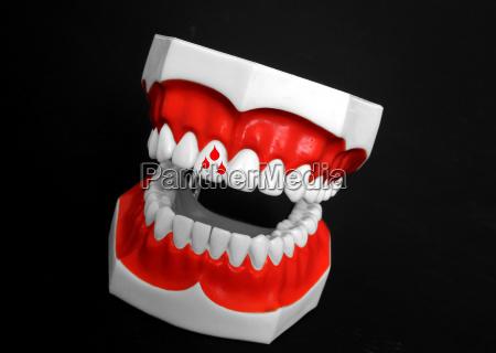 symbolic teeth blossoms tooth symbols symbolism