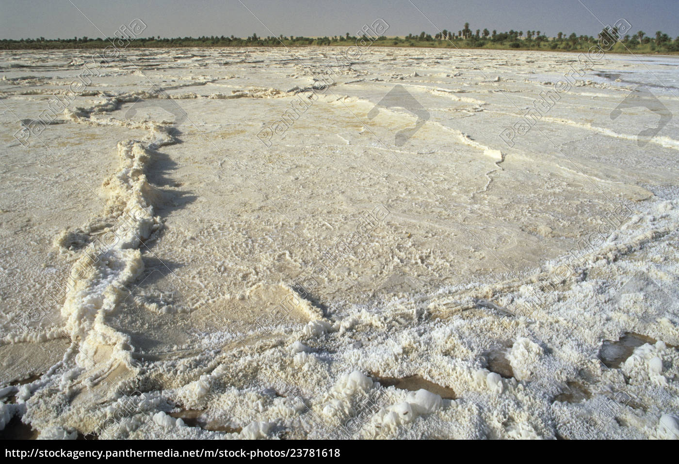 sebkha, , salt, pan, at, the, oasis - 23781618
