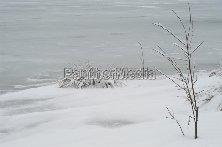 frozen lake and snowy lake with