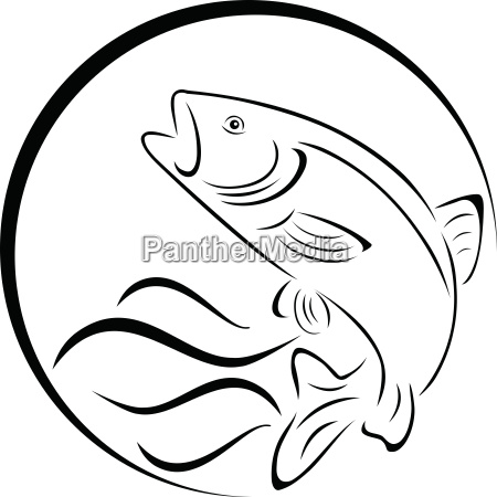 trout fish logo fishing and fish