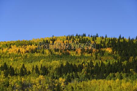 usa colorado scenic view of kenosha