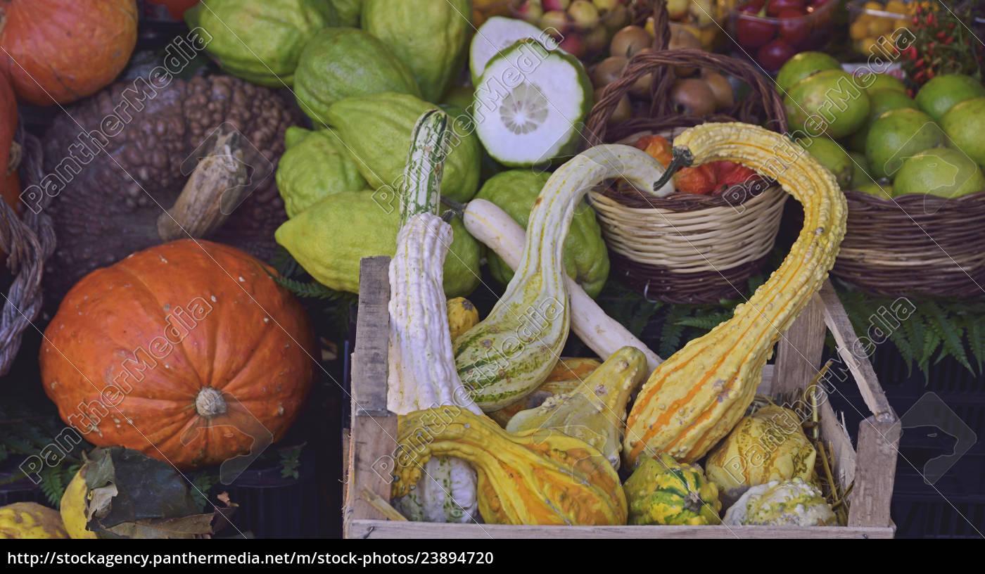 autumn, vegetables, at, farmer's, market - 23894720