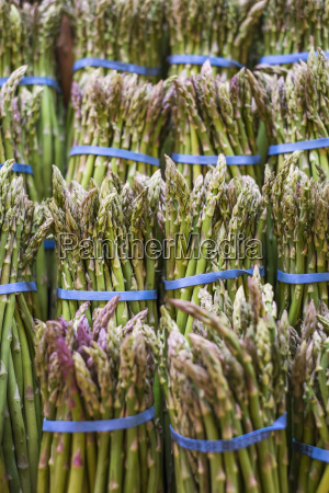 close up of asparagus bunches on