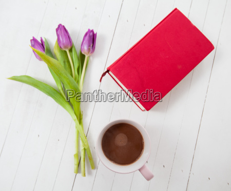 tulips flowers book