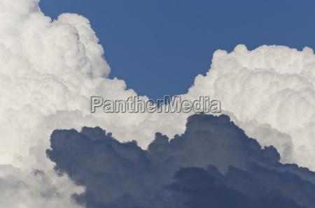 cumulus cloud formation
