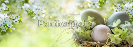 easter eggs in spring