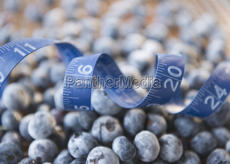 close up of frozen blueberries in
