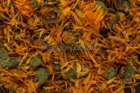 calendula flowewr tea