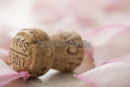 closeup of cork with rose petals