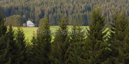 germany baden wurttemberg black forest black