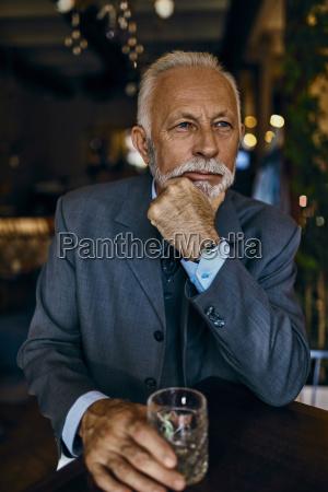 portrait of elegant senior man in