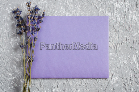 holiday background or greeting card with