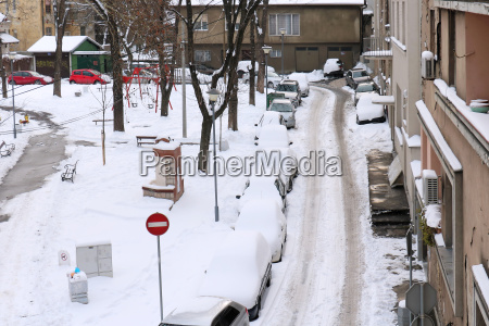 parked cars covered by snow